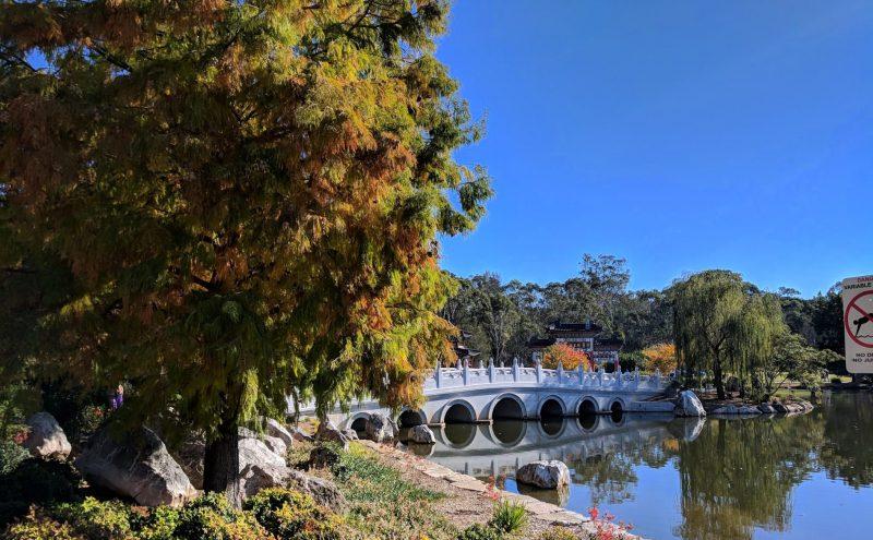 Schofields suburb profile